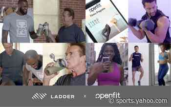 LeBron's Ladder fitness company acquired by OpenFit