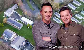 I'm A Celebrity: Aerial photos show Ant McPartlin and Declan Donnelly's £1,000-a-WEEK cottages