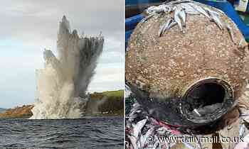 Royal Navy bomb disposal experts detonate 770lb WWII mine