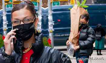 Bella Hadid stocks up on houseplants during big day out for the 24-year-old supermodel in NYC
