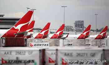 Qantas CEO Alan Joyce fears international travel will be on hold until July next year