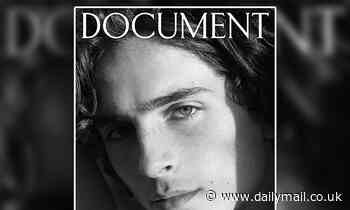 Timothee Chalamet gives a smoldering stare as he covers Document Journal in shots by Hedi Slimane