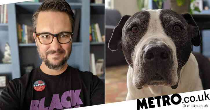 Big Bang Theory's Wil Wheaton devastated as beloved dog Seamus dies: 'I will miss him forever'