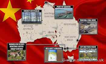 The shocking level of Chinese ownership in Australia - from cattle stations and ports to water