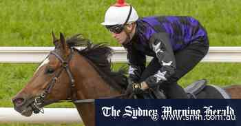 Post-gelding flop not the real Big Parade: Newnham