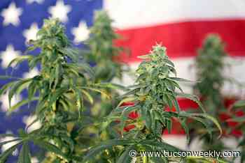 Zoned Out: Local Municipalities React to Prop 207 Passing