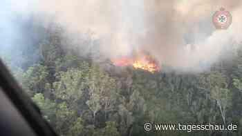 Feuer zerstört halb Fraser Island in Australien