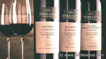 2 vinos premiados de Terrazas de los Andes que tenés que probar - iProfesional.com