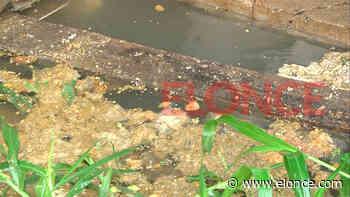 Vecinos de Lomas del Mirador II reclamaron soluciones a los desbordes cloacales - Paraná - Elonce.com