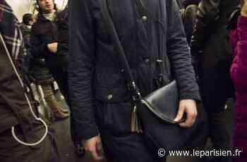 Savigny-le-Temple : coup d'arrêt à la série de vols de sacs avec violence - Le Parisien