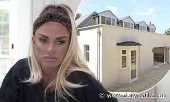 Katie Price 'left terrified as her new rented Surrey home is overrun with RATS'