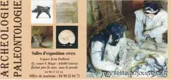 Visite du musée d archéologie et paléontologie - Journées du Patrimoine 2020 - Valreas Espace Jean Duffard cours Victor Hugo - Divers - Valréas - sortir à Marseille - Le Parisien Etudiant