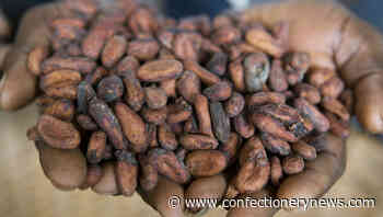 Ghana and Cote d'Ivoire cancel Hershey's sustainability programmes as row over 'cheap cocoa beans' intensifies - ConfectioneryNews.com
