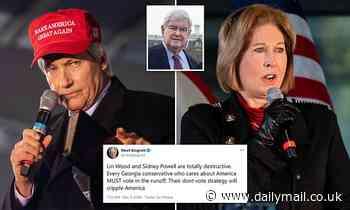 Newt Gingrich tells Republicans to ignore Senate boycott demands