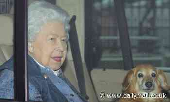 The Queen is left with just one pet dog as Vulcan the Dorgi dies