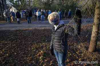 Residents blast 'do-nothing' Lambton Shores plan for gypsy moths - London Free Press (Blogs)