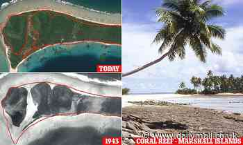 Pacific Ocean islands grow despite rising sea levels
