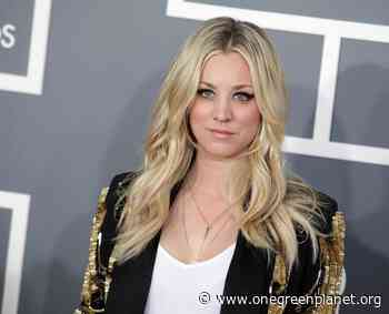 Kaley Cuoco on Her Dog Passing Away: She is Resting at Peace with Everyday's Sunset to Warm Her - One Green Planet
