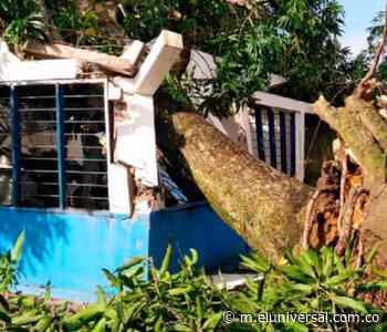 Un vendaval azotó a Barranco de Loba - El Universal - Colombia