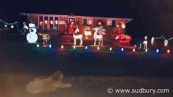 Check out this Hanmer couple's awesome Christmas display and help the food bank at the same time