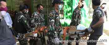 Soupçons de trafic d'animaux: un tigre décapité retrouvé dans un zoo en Thaïlande