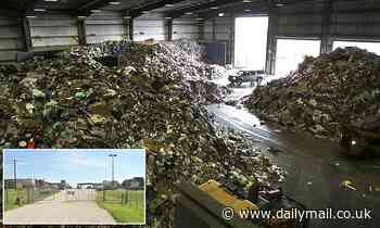 Body of a man is found on conveyor belt of Texas recycling center