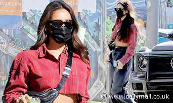 Shay Mitchell keeps it casual as she wears a cropped flannel shirt while stepping out in Los Angeles