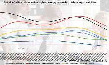 '11-16-year-olds should be removed from school BEFORE term end'