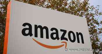 Amazon-owned business given £2m Covid tax break despite sales surge in pandemic
