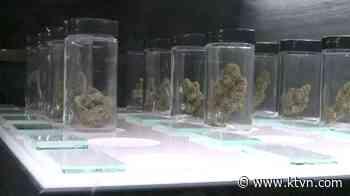House Votes to Decriminalize Marijuana at Federal Level
