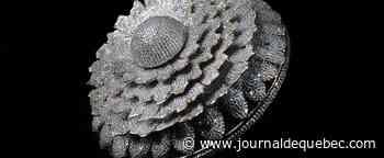 «The Marigold - l'anneau de la prospérité»: une bague avec plus de 12 000 diamants