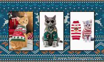 Here comes Santa Claws! Shop the 7 cutest Christmas jumpers for cats