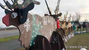 Now Dasher, now Dancer: 9 wooden reindeer spreading holiday cheer in Saint John