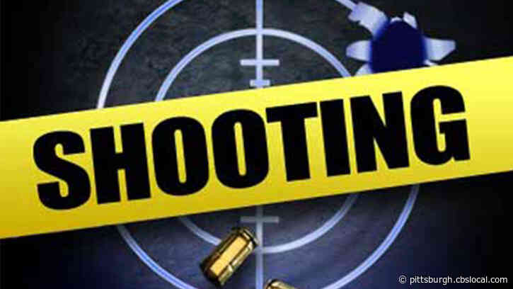 Police Investigating Shooting In Stowe Township