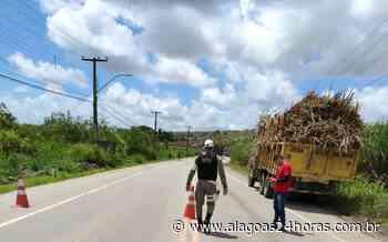 Adolescente é apreendido dirigindo caminhão carregado com cana em Porto Calvo - Alagoas 24 Horas