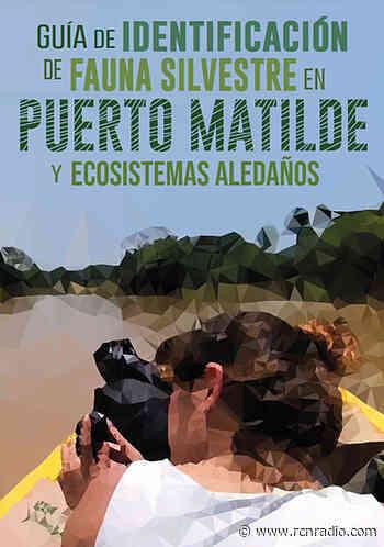 Guía de fauna que impulsa el ecoturismo en Yondó, Antioquia - RCN Radio