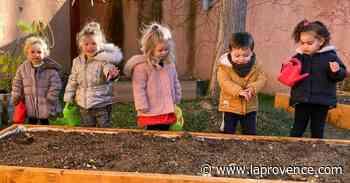 Meyreuil : des jardiniers en herbe mettent la main au potager - La Provence