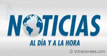 Caballo en el salitral - Info Arenales