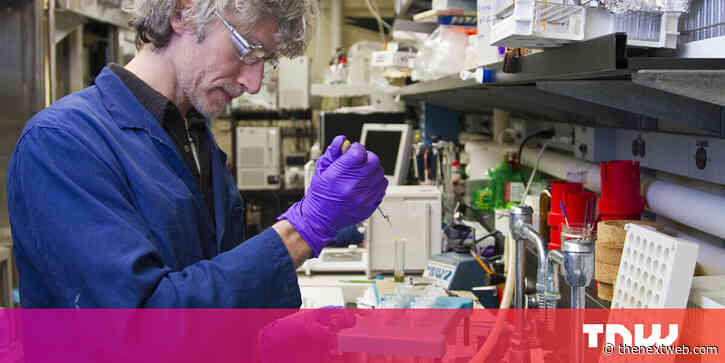 How gene editing could protect us from future pandemics