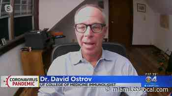 CBS4's Elliot Rodriguez Sits With Dr. David Ostrov And Talk About Antihistamine Drugs That Can Be Affective Against Coronavirus - CBS Miami