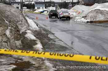 Labrador City man going to trial on murder charge - TheChronicleHerald.ca