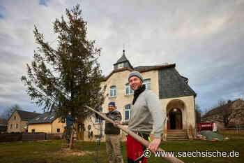 Warum Waltersdorf jetzt einen Baum hat - Sächsische Zeitung