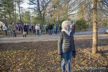 Township takes pass on joining gypsy moth battle in Lambton Shores - London Free Press (Blogs)