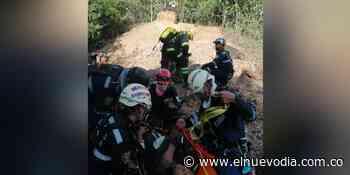 Rescatan seis personas atacadas por abejas en Carmen de Apicalá - El Nuevo Dia (Colombia)