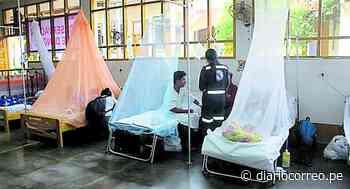 Niña y adulto son referidos desde Satipo a Huancayo por casos graves de dengue - Diario Correo