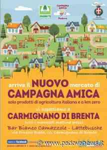 Mercati di Campagna Amica, due nuove aperture a Carmignano di Brenta e Monselice - Padova News
