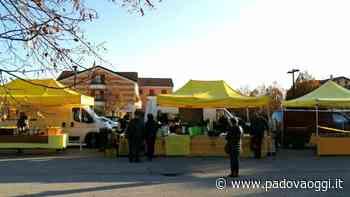 Nuovo mercato di Campagna Amica a Carmignano di Brenta: prodotti a km zero e convenienza - PadovaOggi