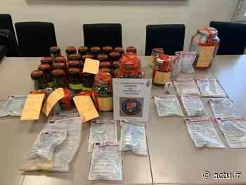 Nanteuil-le-Haudouin : cinq personnes interpellées et 1,4 kg de cannabis saisi par la gendarmerie - actu.fr