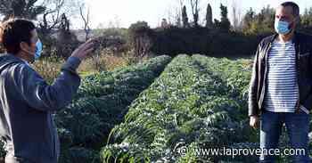 Ventabren : des produits de la ferme côtoient les étoiles - La Provence