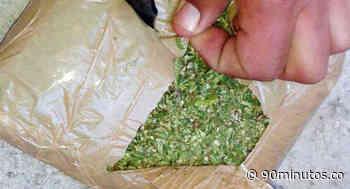 Fiscalía incautó 400 kilos de marihuana hallados en un vehículo en Timbío - 90 Minutos